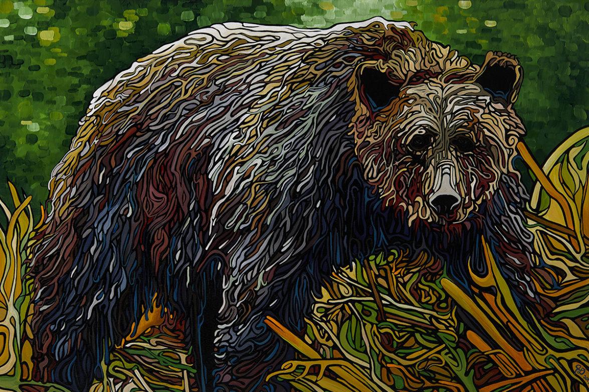 111 Great Bear Rainforest p