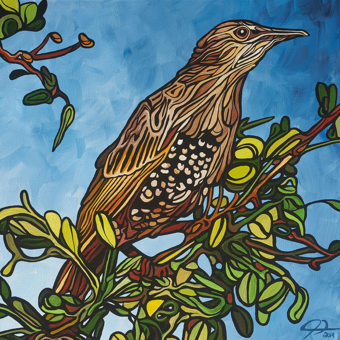 166 Starling p