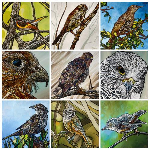 Collage Birds Other Birds