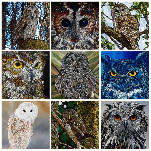 Collage Birds Owls